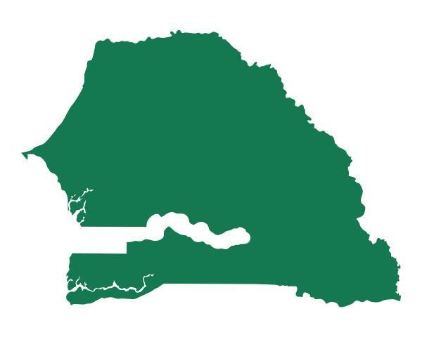 grafico verde ilustracion mapa geografia cartografia