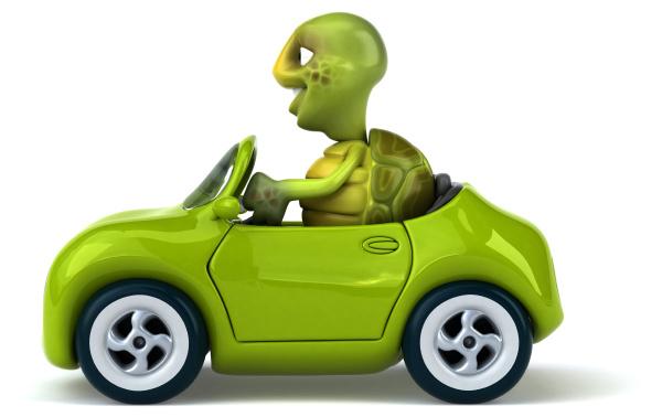 tortuga, divertida - 28218304