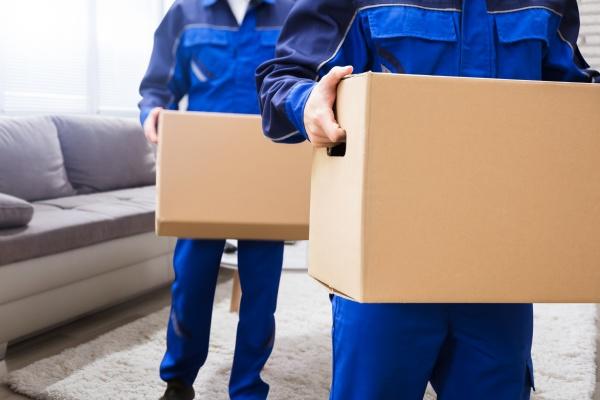 servicio de mudanzas y furgonetas