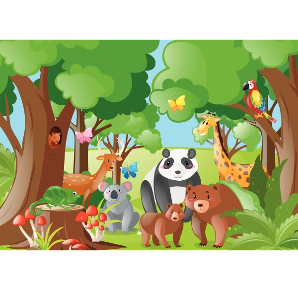 animales, salvajes, en, la, selva - 30528532