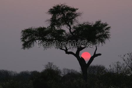el kalahari sunset