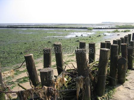 praia beira mar da praia litoral