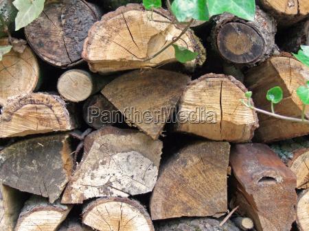 arbol jardin madera combustible apiladas jardines