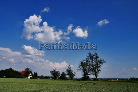 azul casa construccion arbol arboles campo