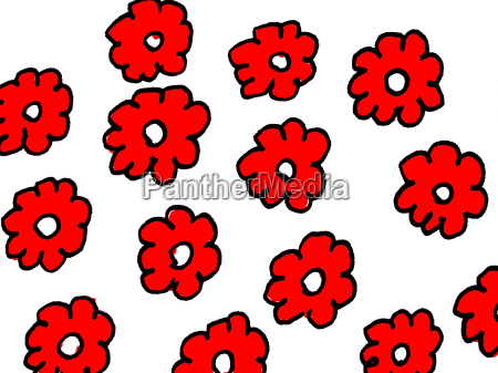 flor planta dibujo foto modelo rojo