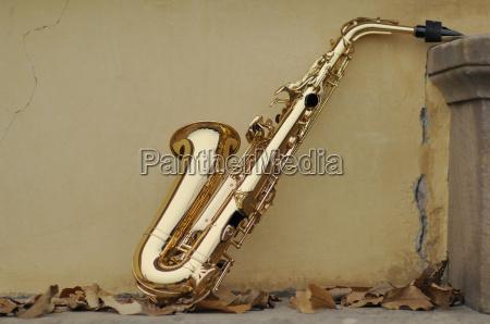 saxofon con las hojas de otonyo