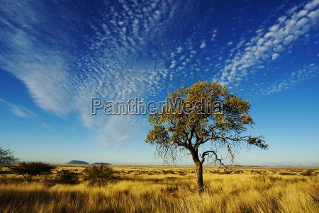 cielo sobre namibia