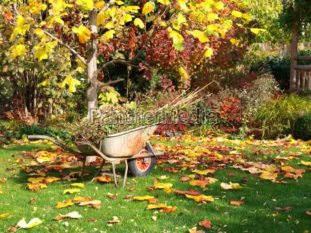 jardin de otonyo