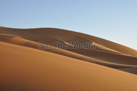 dunes in the sahara morocco africa