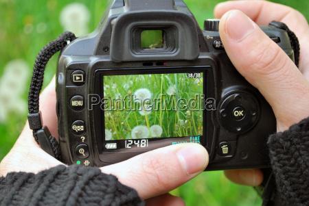 fotografo de la naturaleza