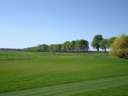 golfe mecklenburgvorpommern kaschow golfclub strelasund golfpark