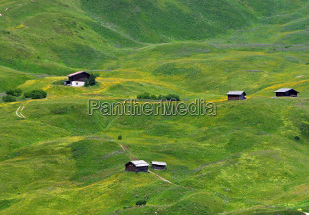 dolomitas alpes tirol del sur prado