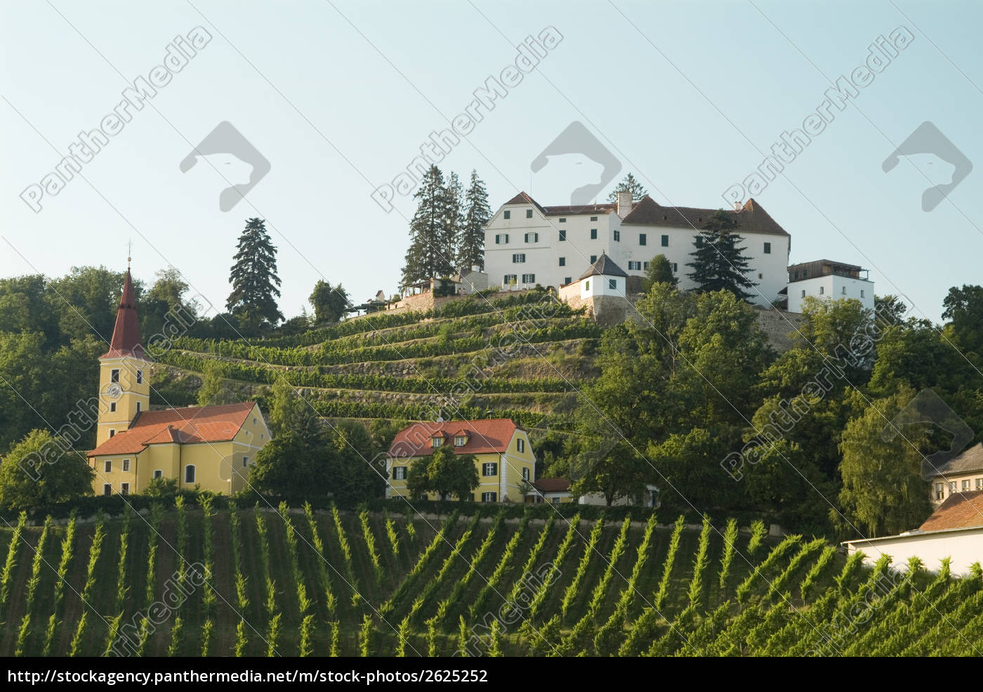 wine, hill, kapfenstein - 2625252