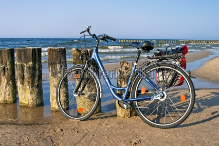ocio rueda playa la playa orilla