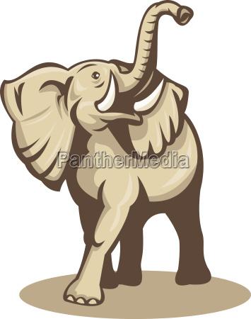 elefante colmillo toro ilustracion fauna africa
