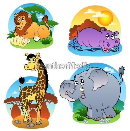various tropical animals 1