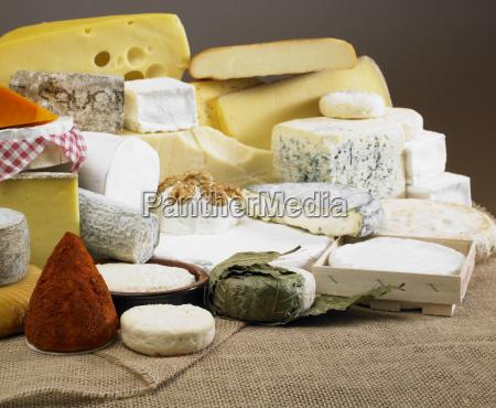 bodegon de queso
