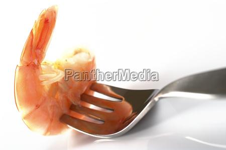 langostinos cocidos en tenedor