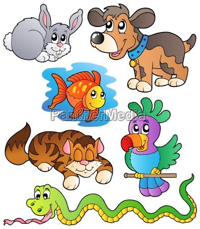 coleccion de mascotas felices 1