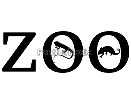 senyal opcional jardin grafico animal reptil