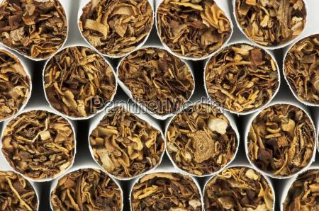 cigarrillo inclinacion tabaco cancer adicto nicotina