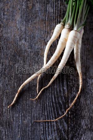 madeira raiz vegetal conselho salsa pagina