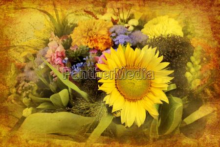 flor flores planta nostalgia girasol decoracion
