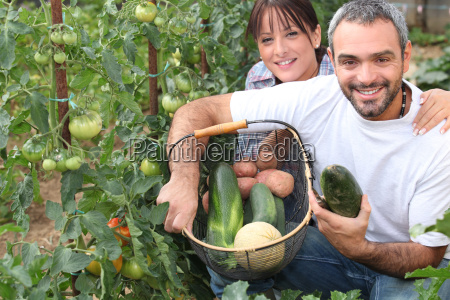 couple growing vegetables