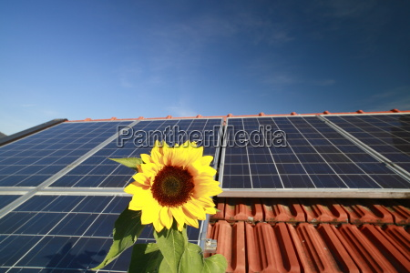 solar roof system