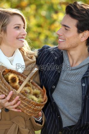 pareja recoleccion de castanyas en la