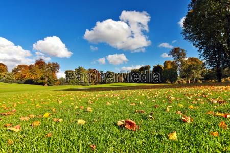 hermoso otonyo en el parque falkirk