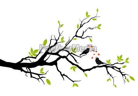 arbol de primavera