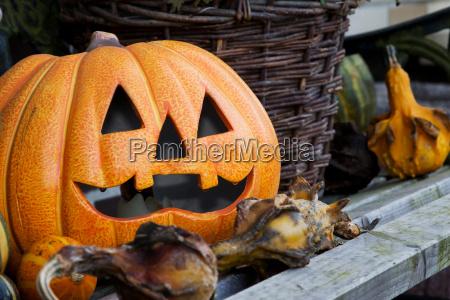 todavia vida de halloween