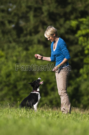 mujer mascotas animal de peluche perro