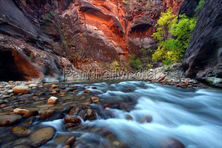 hermoso bueno parque estado nacional nacionales