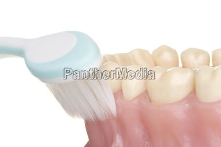 la higiene bucal