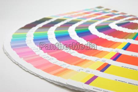guia del color