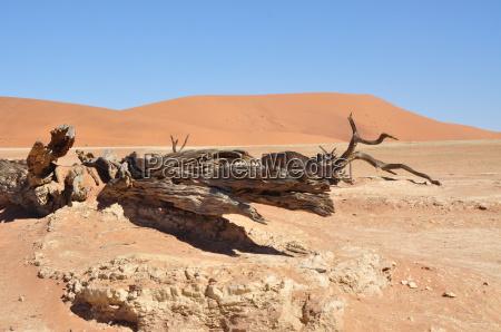 namibia paisaje de sossusvlei