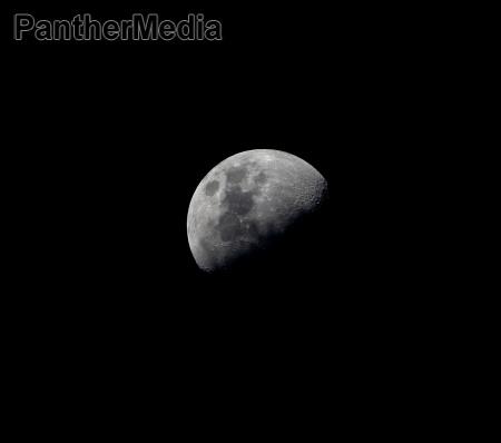 africa namibia luna elefante cielo estrellado