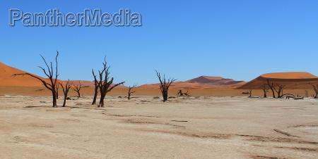 desierto africa namibia