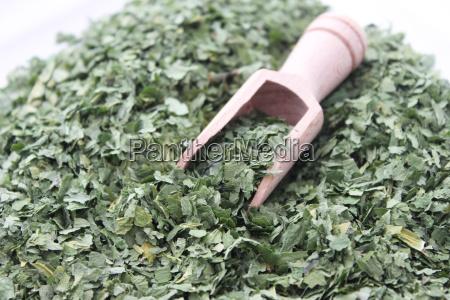 vegetal seco col hierba hierbas
