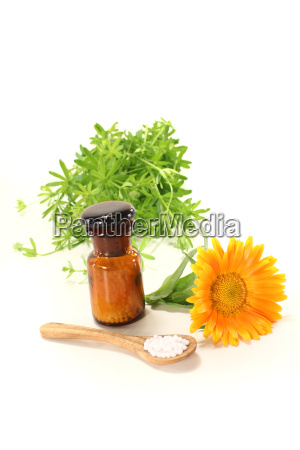 homeopathy with marigold