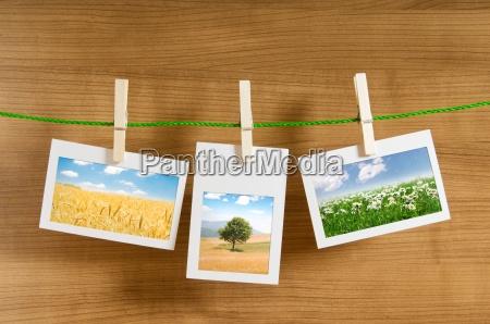 marcos de cuadros con fotos de