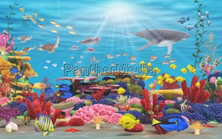 paraiso submarino