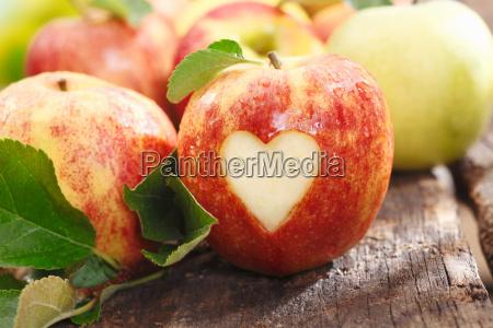 comida existir vida vitamina simbolico disenyo