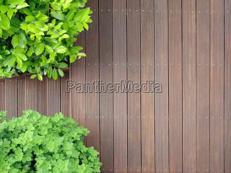 bangkirai terrace desde arriba