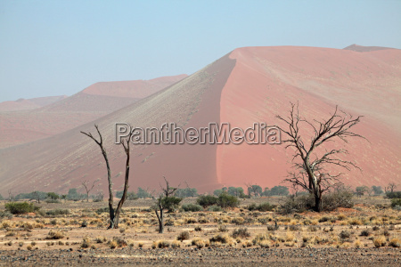 dune en namib naukluft park