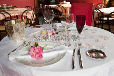 romantico boda matrimonio flor flores planta