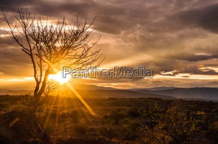 salida del sol espectacular del desierto