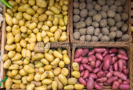 las diferentes variedades de patatas